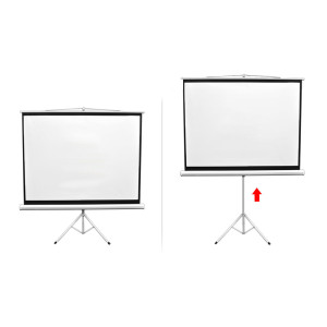 rent-video-projection-screen-tripod-height